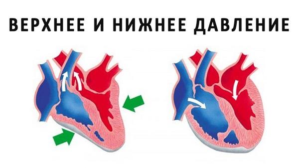 Разница между систолическим и диастолическим давлением называется 45