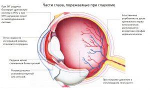 Бесконтактная тонометрия глаза норма