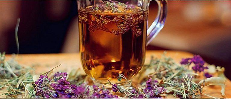 Помогает ли иван чай при алкоголизме